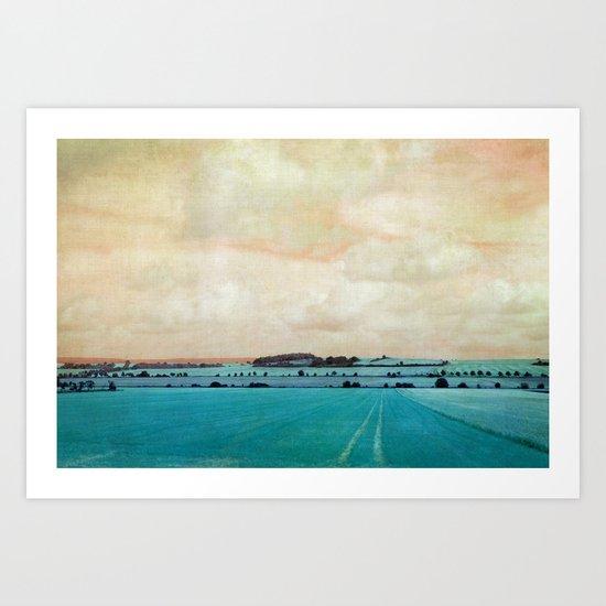 blue field Art Print