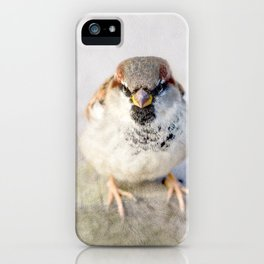 Don't Mess With Sparrows iPhone Case