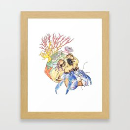 Home I: Hermit Crab Framed Art Print