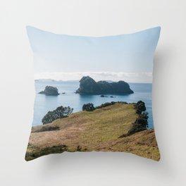 Coromandel Peninsula Throw Pillow
