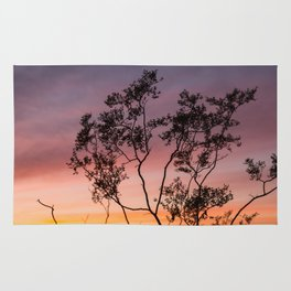 Sonoran Sky at Sunset Rug