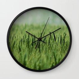 Crop Wall Clock