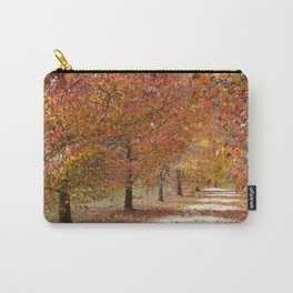 Sun Lit Tree Lined Avenue in Autumn Carry-All Pouch