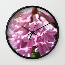 Pink Hyacinth Wall Clock