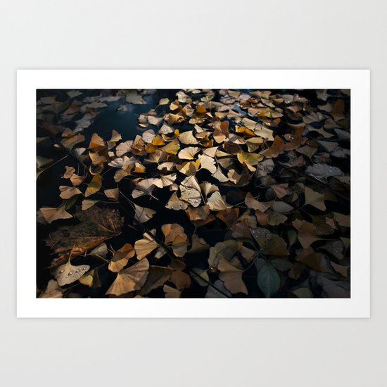 Ginko Leaves Art Print