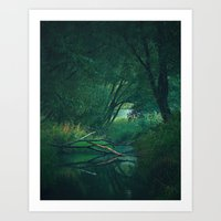 By the Creek Art Print
