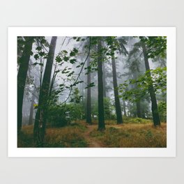 Spooky Enchanted Forest Art Print
