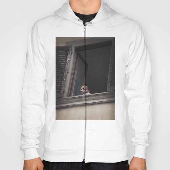 take me with you _ Beagle in a window Hoody