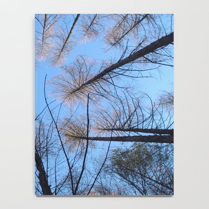 Glowing trees II Notebook