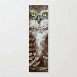 Brown Owl Canvas Print