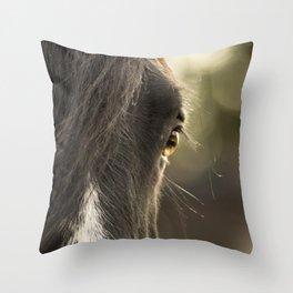 Soul Window Throw Pillow