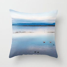 Flamingoes on El Calafate, Patagonia, Argentina Throw Pillow