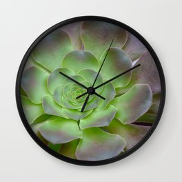 Hens and chicks cactus Wall Clock