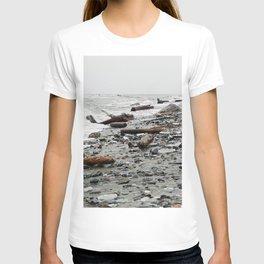 Driftwood Beach after the Storm T-shirt