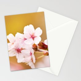 Blooming fairy cherry tree flowers Stationery Cards