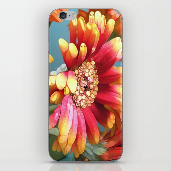 Sunny Gerbers iPhone & iPod Skin