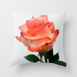 Lovely Peach Rose Throw Pillow