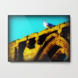 - Taking In the View -  Metal Print