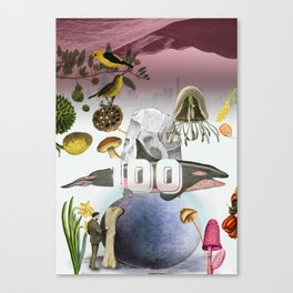 100 Canvas Print