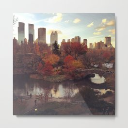 Central Park Fall Foliage Metal Print