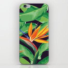 Bird of paradise flower iPhone Skin
