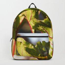 Beet Leaves Backpack