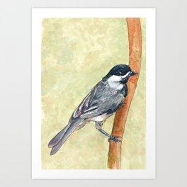 Bird 2 Art Print