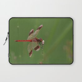 Red Dragonfly Laptop Sleeve