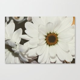 A Little Happiness Canvas Print