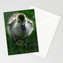 Cute Duckling Walking on a Lawn Stationery Cards