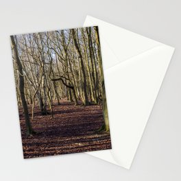 Bare Winter Woods Stationery Cards