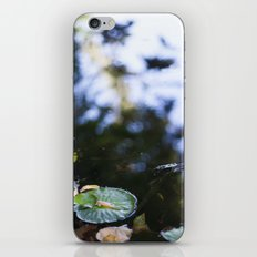 pond iPhone & iPod Skin