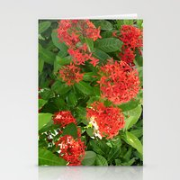 indonesia Stationery Cards featuring Flower (Bali, Indonesia) by Christian Haberäcker - acryl abstract