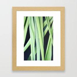 Fertility of the Soil Framed Art Print