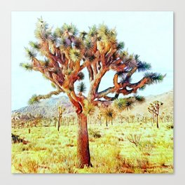 Joshua Tree VG Hills by CREYES Canvas Print