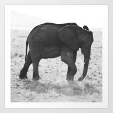 An Elephant Calf Art Print