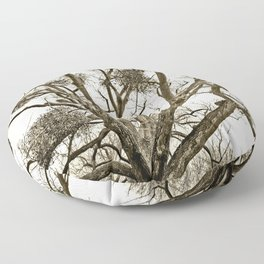 Leafless Tree in Winter I Floor Pillow