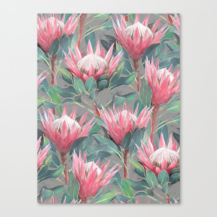 Pink Painted King Proteas on grey Canvas Print