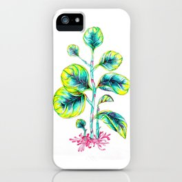 Peperomia iPhone Case