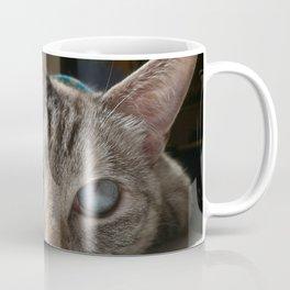 Icy Stare Coffee Mug