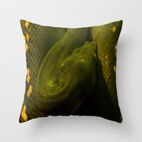 monty python Throw Pillows featuring basking python by Claes Touber
