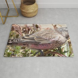 Watercolor Bird, Endangered Brown-capped Rosy Finch 02, AVC, RMNP, Colorado Rug
