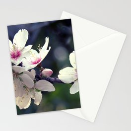 Blooming spring Stationery Cards