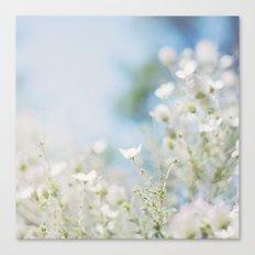 . sweet spring . Canvas Print