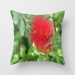 Beautiful Bottle Brush Flower With Garden Background Throw Pillow