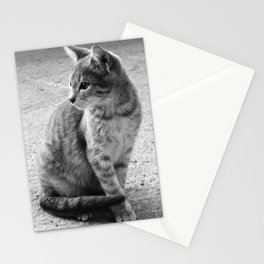 Lloyd- Black and White Cat Photography Stationery Cards