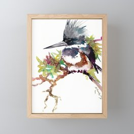 Belted Kingfisher Framed Mini Art Print