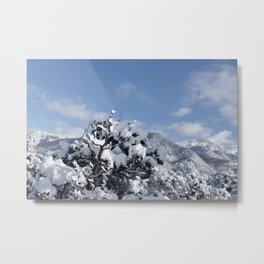 SnowScape Metal Print