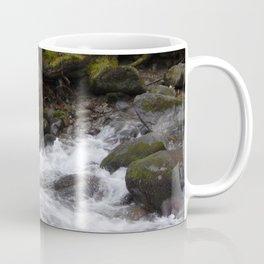 Travel to Slovakia for the ski resort of Jasna Coffee Mug