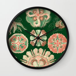 Ernst Haeckel Discomedusae Jellyfish Wall Clock